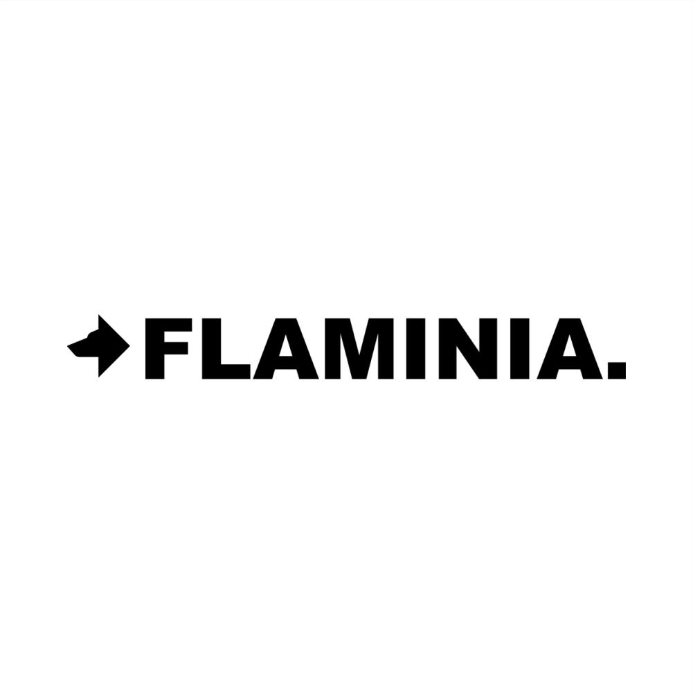 sanitari - flaminia